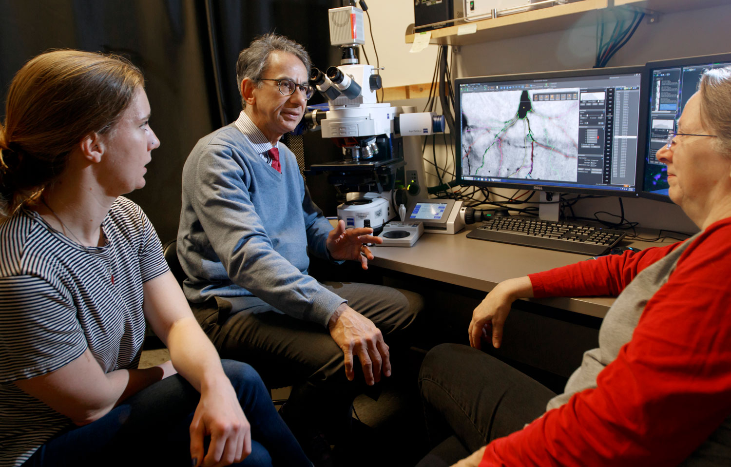 Researchers discussing a brain cell image