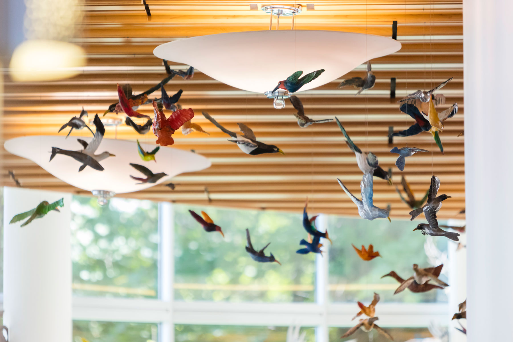 Colorful ceramic birds hanging from the ceiling in the Doernbecher hospital lobby