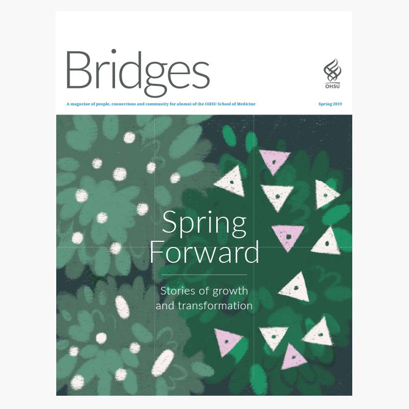 Bridges Spring 2019 issue cover
